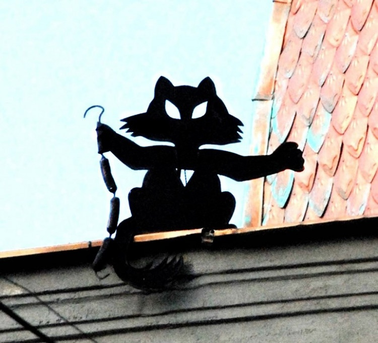 Коты Одессы
