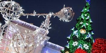 Что делать на зимние праздники в Одессе?