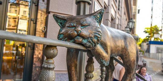 Одеські коти або нові пам'ятки міста